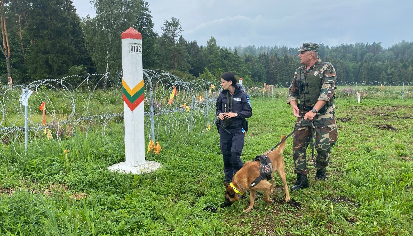 Литва заявила об увеличении потока нелегальных мигрантов